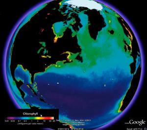 google_earth_5_chlorophyll_map_610x541